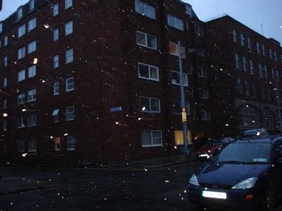 nieve-flasheada