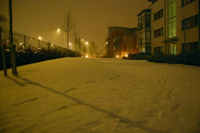 southmede-nevado